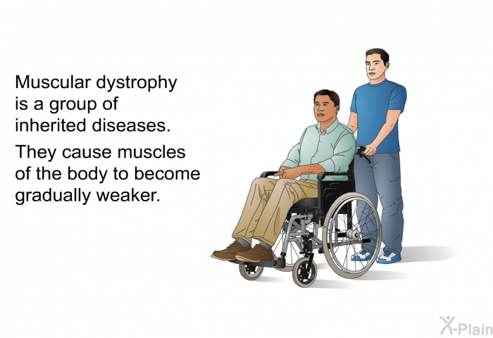 Muscular dystrophy is a group of inherited diseases. They cause muscles of the body to become gradually weaker.