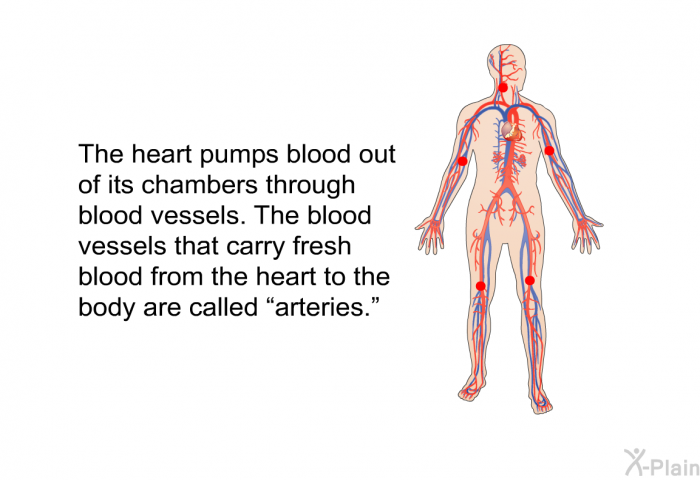 "The heart pumps blood out of its chambers through blood vessels. The blood vessels that carry fresh blood from the heart to the body are called ""arteries."""