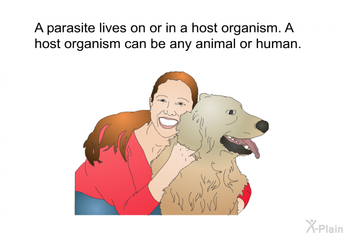 A parasite lives on or in a host organism. A host organism can be any animal or human.